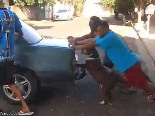 車を押してくれる犬00