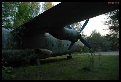 森に捨てられたロシアの輸送機06