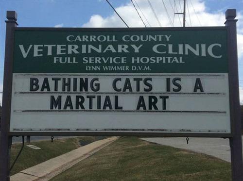 獣医が挙げたおもしろサイン07