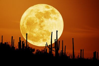 月の魔力26