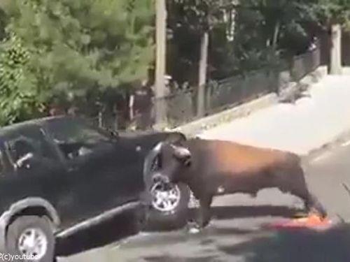 駐車と猛牛05