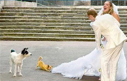 独創的な結婚式15