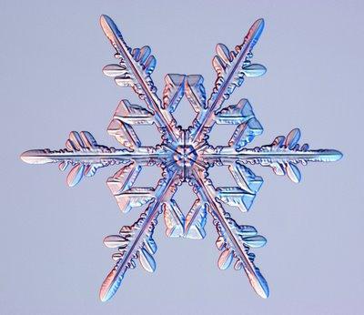 雪の結晶01