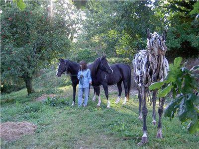 枯れ木で造られた馬のアート05