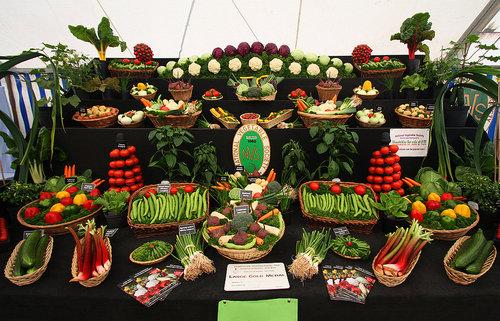 野菜の陳列アート06
