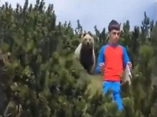 山でクマが少年を追跡する00