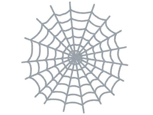 人間も引っかかりそうな壮大なクモの巣00