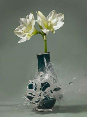 生け花と花瓶─破壊の美学07