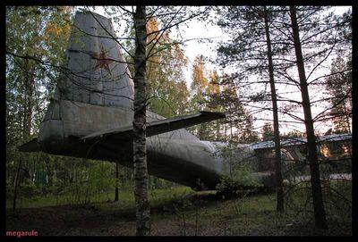 森に捨てられたロシアの輸送機04