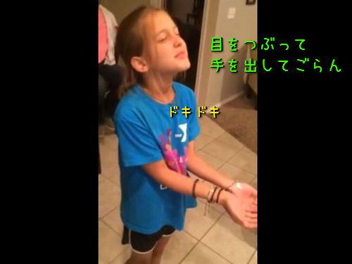 子犬のプレゼントに号泣する8歳の女の子00