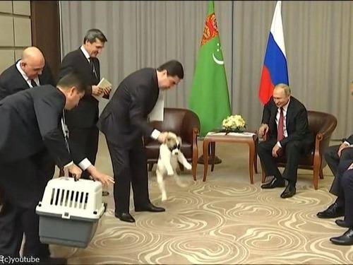 プーチンでさえ犬の正しい抱き方は知っている01