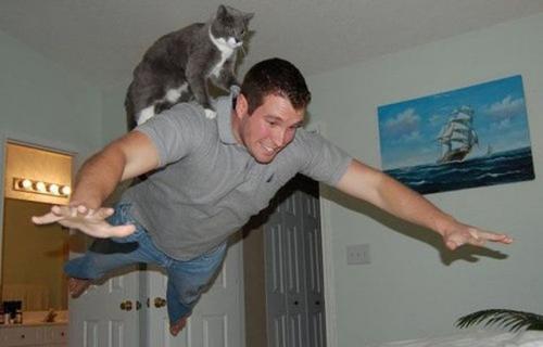 ボス猫21