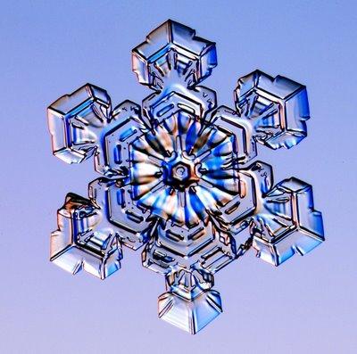 雪の結晶06
