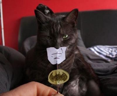 バットマンの作り方01