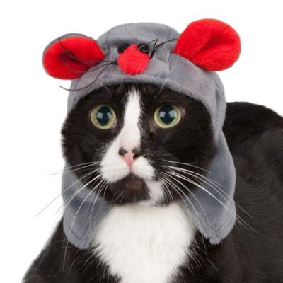猫コスプレ17