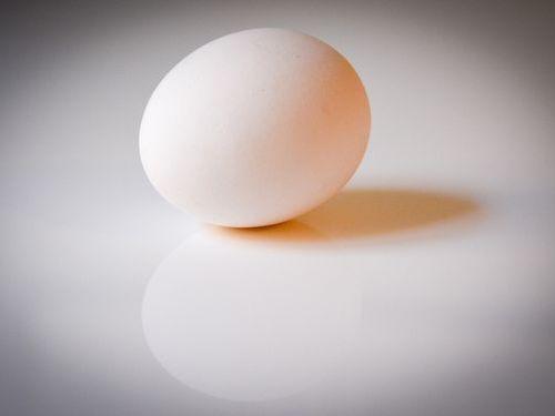 卵の殻アート00