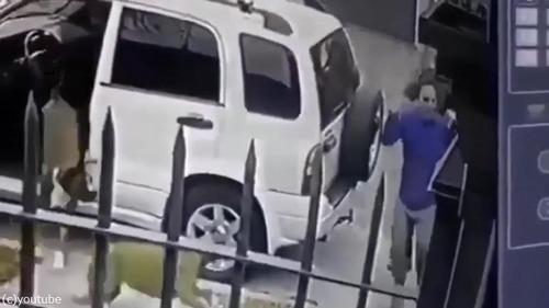 ボクサー犬、飼い主さんを襲った強盗を撃退03