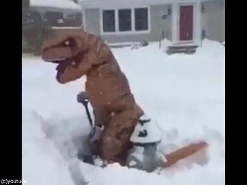 恐竜雪かき05