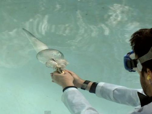 水中でピストル01