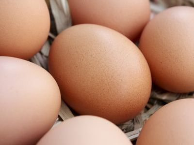 ニワトリが先か、卵が先か