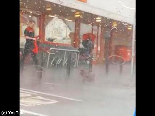 大雨の中繋がれたままの犬00