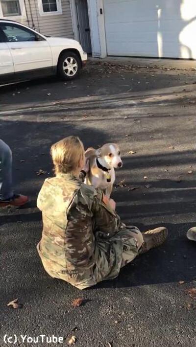 訓練から帰ってきた女性が愛犬と再会03