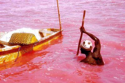 セネガルのレトバ湖01