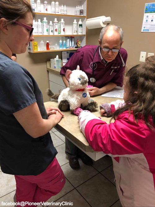 少女が動物病院に猫のぬいぐるみの診察を依頼…獣医の対応に感動05