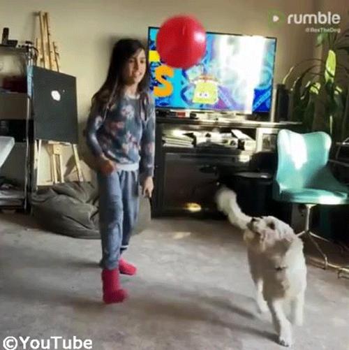 バルーン遊びを楽しむ子ども&ワンちゃん02
