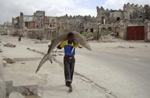 ソマリアの魚釣り13