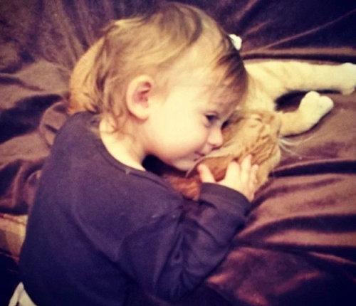 赤ちゃんの育ての親は猫10