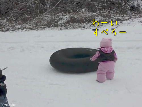 雪の日のわんこ00