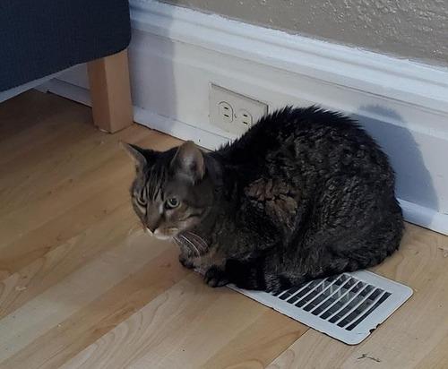 暖房が効かない家01