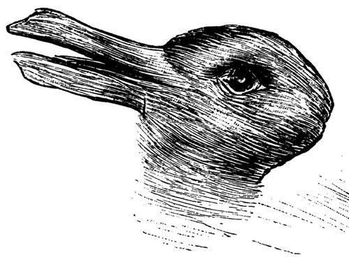 ウサギとアヒルのだまし絵00