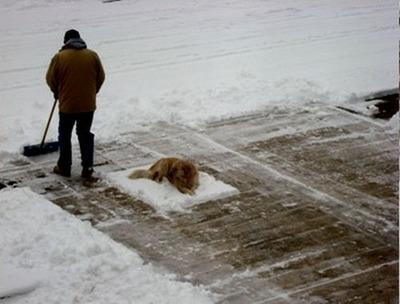 雪かきで困った03