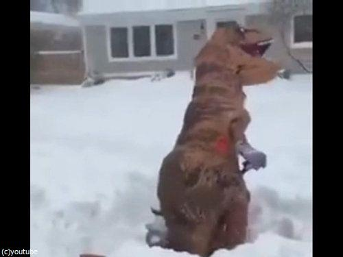 恐竜雪かき04