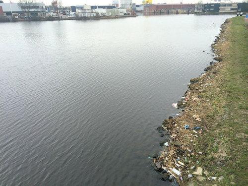 オランダの川辺をゴミ掃除05