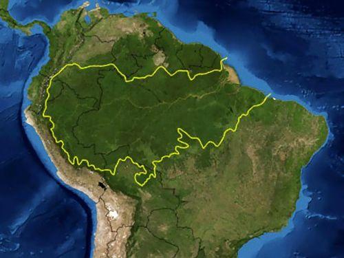アマゾンの伐採00