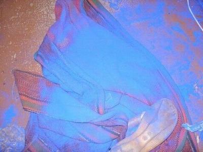 青い犬05