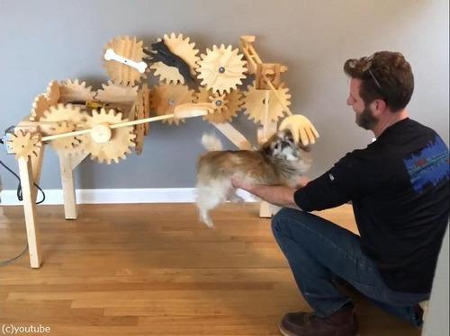 犬を自動でナデナデするマシーン06