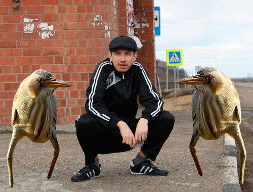 変なルックスの鳥04