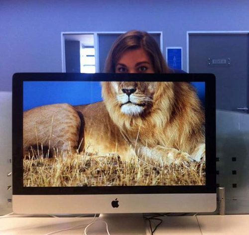 職場で「動物園ごっこ」20