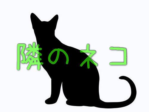 隣人の猫00
