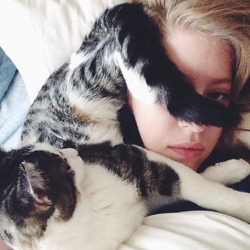 猫に生活を脅かされる03
