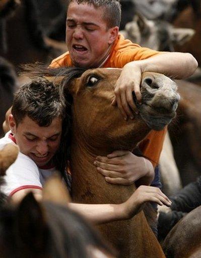 スペインの馬祭り06