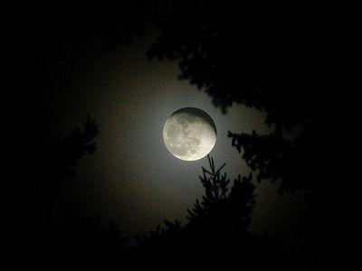 月の魔力14