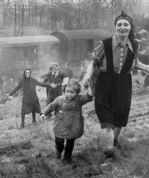 時代を映す歴史的な写真10