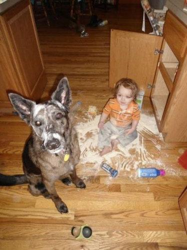 子供を持ちたくない理由19