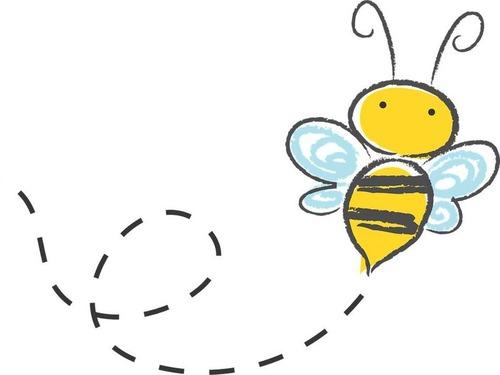 買い物から戻ったら車に1万5000匹のミツバチが