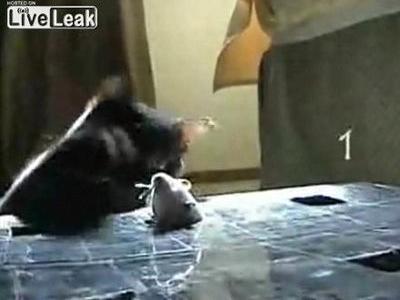 ネズミたたき